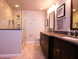 Master Bathroom Design Remodel