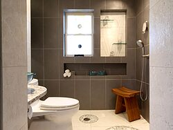 Universal Design Gray Bathroom